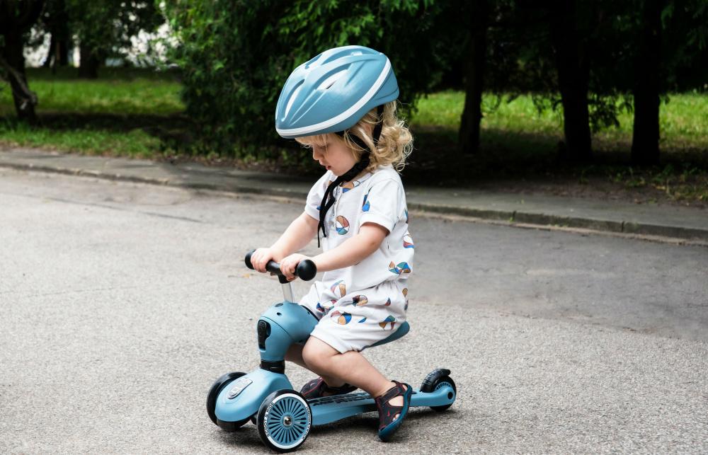 Scoot and ride highwaykick1 steel