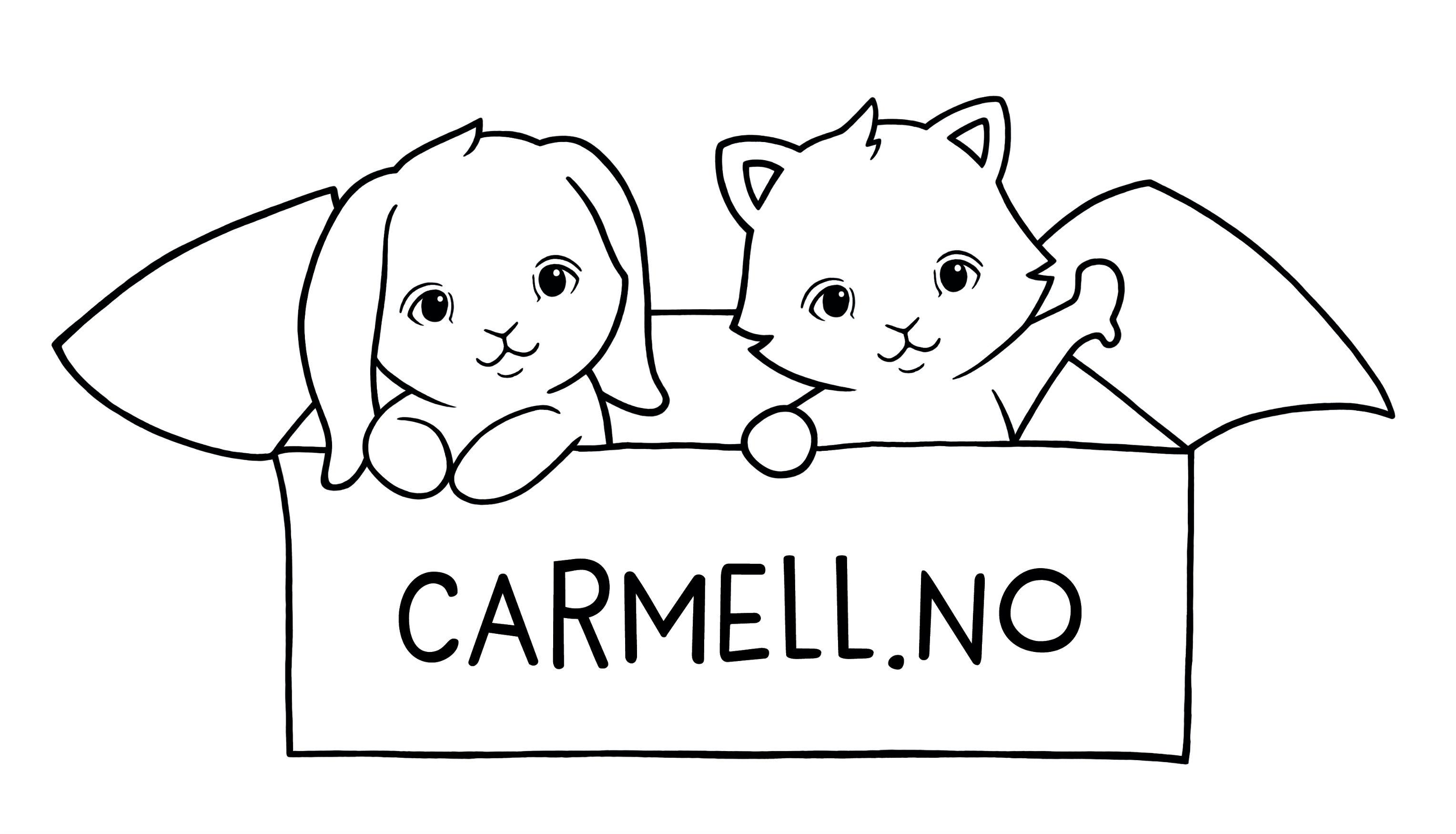 Carmell.no – Din barnebutikk på nett